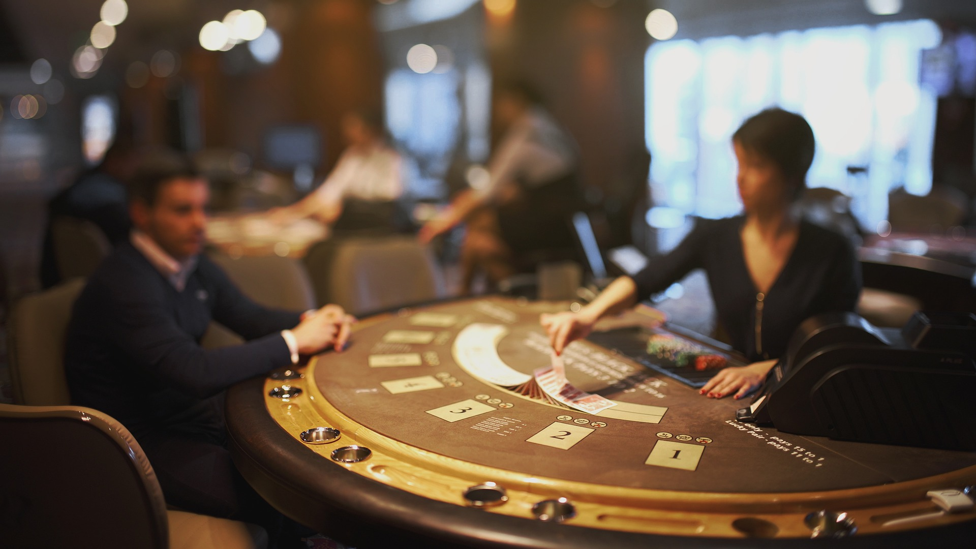 Casinos and Card Counting
